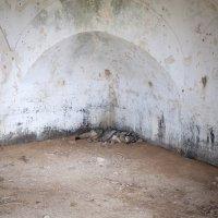 Nele Gülck Abandoned Thermal Springs 15